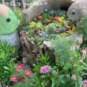 メルヘン花壇が可愛すぎて毎朝仕事に遅刻しそうでヤバイの