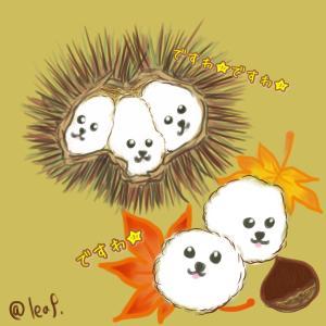 秋の味覚の栗拾い!ワンコママ友と栗トレードでわらしべ長者
