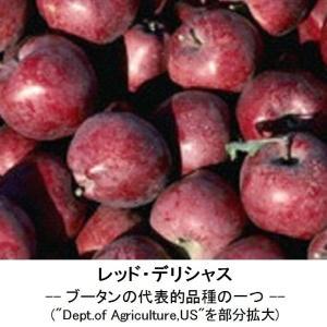 092 3.リンゴ