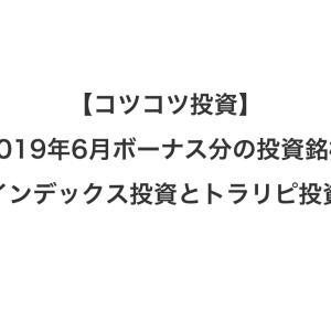 【コツコツ投資】2019年6月ボーナス分の投資銘柄(インデックス投資とトラリピ投資)