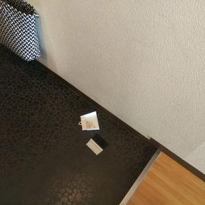 水拭き7日め:和室のデスク周りを水拭きしました