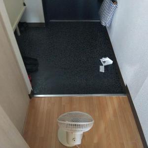 水拭き8日め:トイレの壁~床を水拭き(泡)しました