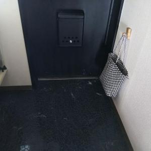 水拭き11日め:玄関とトイレを水拭き(泡)しました