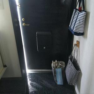 水拭き15日め・16日め・17日め:玄関と床を水拭きしました
