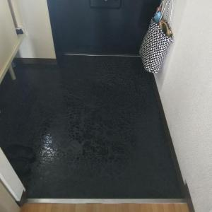水拭き22日め、23日め、24日め:玄関とトイレの水拭き+床掃除