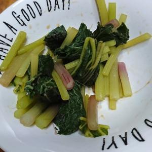 【山菜】春の山菜を天ぷら・おひたし・バター炒めで食べまくってみた!