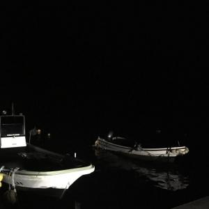 【画像】仕事終わりの深夜から東北で海釣り