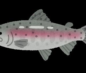 なんで川魚のお刺身はあまり美味しくないの