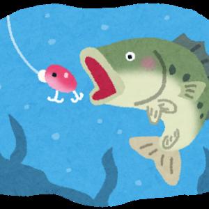 ブラックバスとかいう謎に人気のある魚
