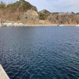 【画像】東北で海釣り~春の空気と花粉の訪れ~