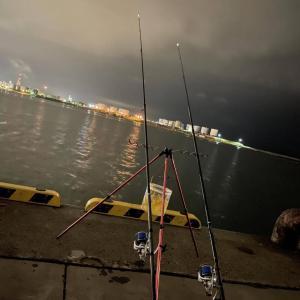 【画像】釣りに来たらキツネさんやってきた
