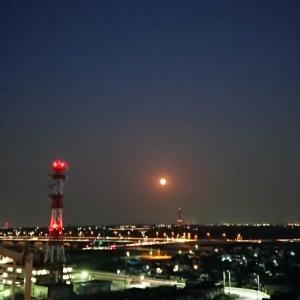 月に願いを…。