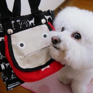 NEWお散歩バッグ。ちゃんと持ち帰る飼い主は犬を捨てない。