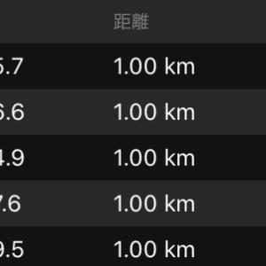 昨日は15kmビルドアップ走。
