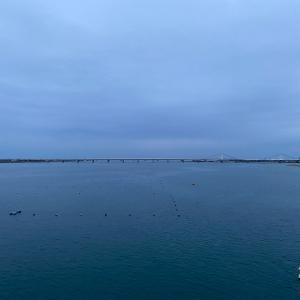 昨日は徳島で夕方ラン。今日は和歌山に移動します。