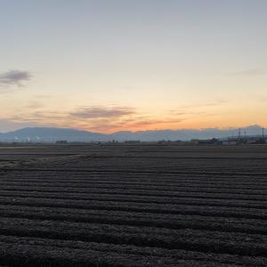 東近江市八日市で朝ラン。今日は大阪へ。