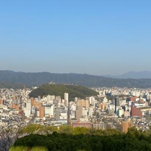 昨日は松山総合公園で花見ラン。