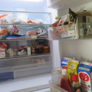 新しい冷蔵庫と洗濯機