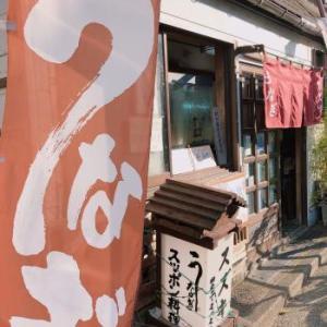 新横浜のアジサイとウナギ