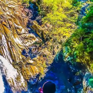 ジックリ散策して布引の滝~毎日登山~
