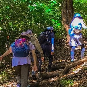 北野坂から速攻で自然の中~毎日登山~