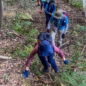 森をグルグル~散策中~毎日登山~
