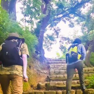 朝イチの金鳥山の景色を~モーニングトレイル~毎日登山