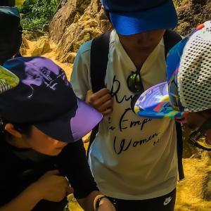 毎日登山スタッフトレーニング(岩梯子編)