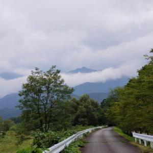 白州曇ってます