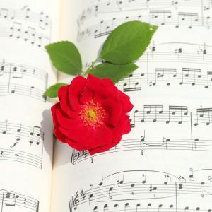 理論に興味をもてるように〈袖ケ浦市 ピアノ エレクトーン くらの音楽教