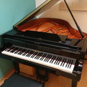 ピアノを弾いてみませんか<袖ケ浦市 ピアノ エレクトーン くらの音楽教室>