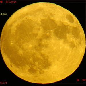 満月の「月の出」は大きい!? 11/13