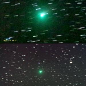 アトラス彗星を投稿しました 3/30-3