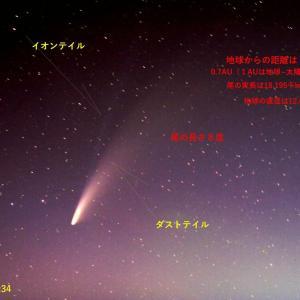 ネオワイズ彗星の尾の実長ですが 7/22