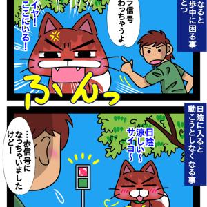 日陰サイコ〜!な柴犬