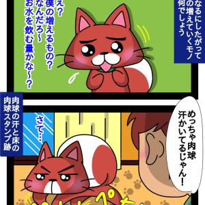 肉球汗かき柴犬