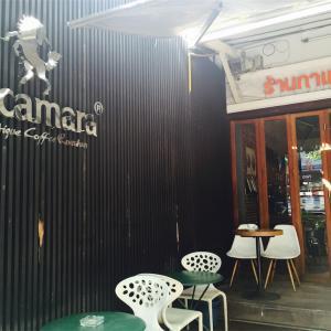 チェンマイ、旧市街 「Pacamara Coffee」