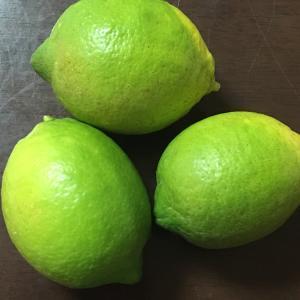 毎年いただく無農薬レモン