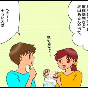 昨日の続き・まさかタコとイカの漢字がこんなに違うとは!!