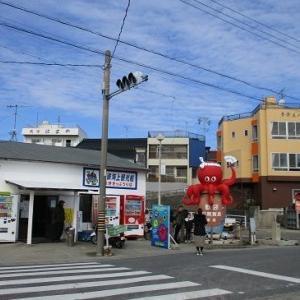 日間賀島タコ飯シラス丼(愛知南知多)