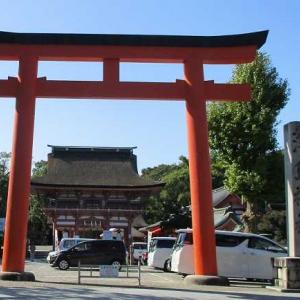 津島神社(愛知)大イチョウ・津島銘菓あかだくつわ