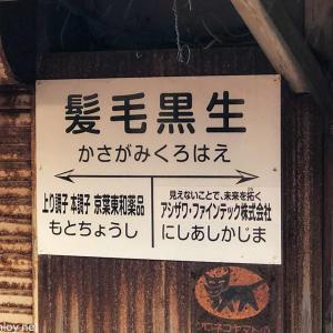 GO TO トラベルと大人の休日倶楽部パスを使って東北を旅行してみた / Vol.1 1日目:経営がまずい!「銚子電鉄」に乗ってみた!