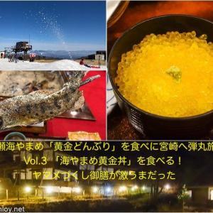 五ヶ瀬海やまめ「黄金どんぶり」を食べに宮崎へ弾丸旅行! / Vol.3 「海やまめ黄金丼」を食べる!ヤマメづくし御膳が激うまだった