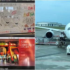 2021年JALダイヤモンド修行Part3 / Vol.2 2日目 日本航空 JAL904 沖縄 – 羽田 搭乗記