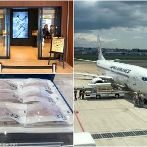 JMBダイヤモンド修行を兼ねて日本一周ぐるぐるの旅 / Vol.9 日本航空 JAL3515 福岡 – 札幌搭乗記
