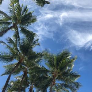 ハワイ★Days 6-7:旅の醍醐味はコミュニケーション