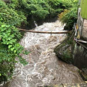 大雨で水嵩が増しています