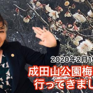 成田山公園の梅まつりに行ってきました(2020年2月19日)