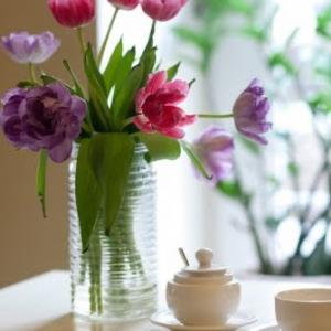 部屋を片づけて花を飾ると運気がアップするのか2週間検証してみた結果