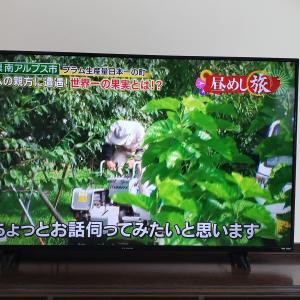 老舗国産メーカーフナイの評価【貧乏人でも大型テレビが買えた!】